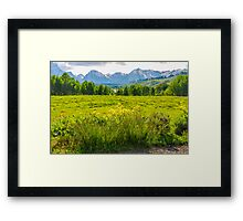 View Of The Grand Tetons Framed Print