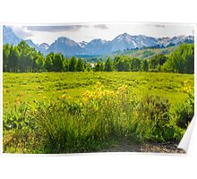 View Of The Grand Tetons Poster