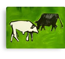 bovines face off Canvas Print