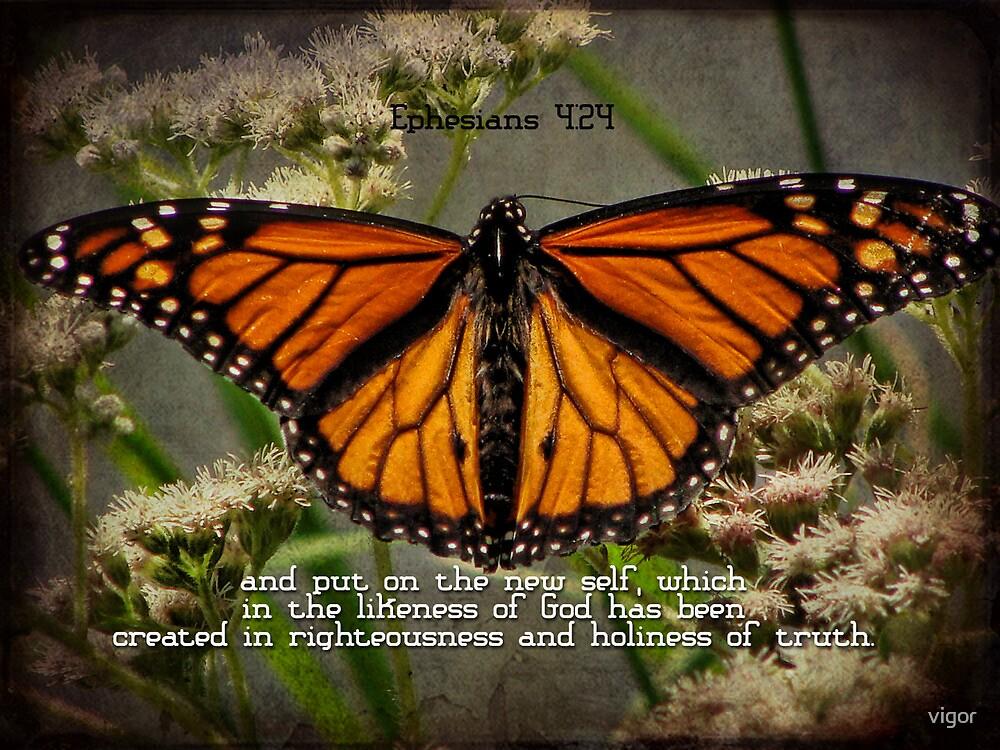 put on the new self-Ephesians 4:24 by vigor