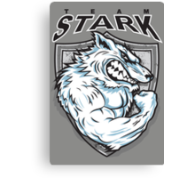 Team Stark Canvas Print