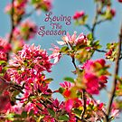 Loving the Season by michaelasamples