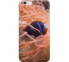 'Hide and Seek' Ocean Style iPhone Case/Skin