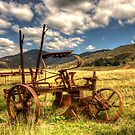 Out to Pasture , Still able to work,   Australia  by Kym Bradley