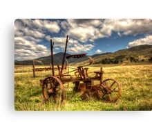Out to Pasture , Still able to work,   Australia  Canvas Print