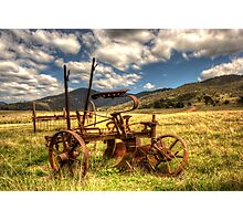 Out to Pasture , Still able to work,   Australia  Photographic Print
