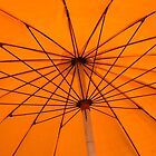 Very orange parasol by wittieb