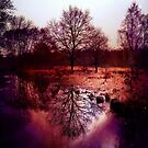 Wimbledon Common IV, London by Ludwig Wagner