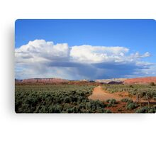 Kodachrome State Park,along the dirt road,Utah Canvas Print