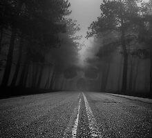 Dark Road by George Mast