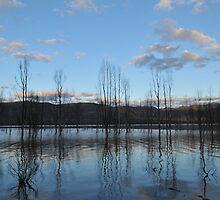 Lake Bellfield by Michael Barnett