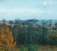 View Point Of Birmingham From The Lickey Woods 1 by Robbie Patterson