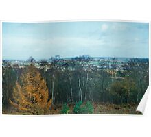 View Point Of Birmingham From The Lickey Woods 1 Poster