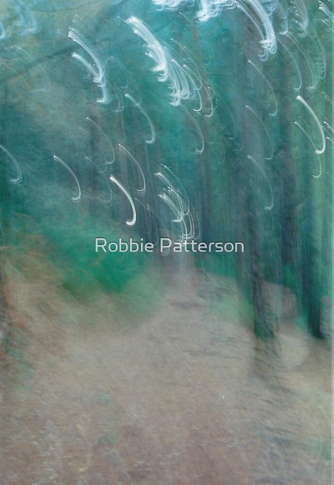 Landscape Portait Experiment by Robbie Patterson