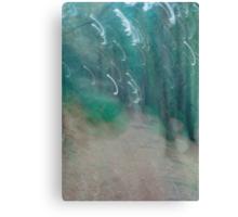 Landscape Portait Experiment Canvas Print