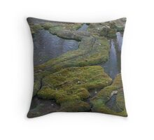 Lichen formations on rock Throw Pillow