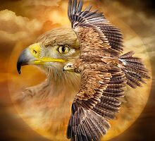 Eagle - Spirit Of The Wind by Carol  Cavalaris