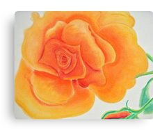 Orange Rose in Pastel Colors Canvas Print