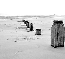 Groynes by Simon Pattinson