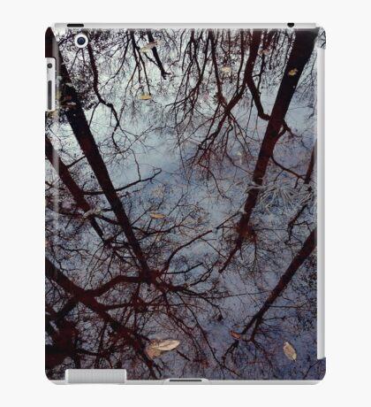 Mirror, Mirror iPad Case/Skin