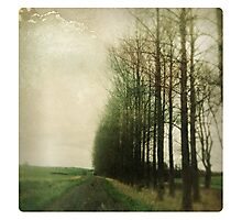 Memory Lane Photographic Print