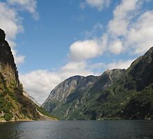 Sunny Norwegian Fjord by 5unm4g