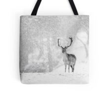 A Stag In The Snow Tote Bag