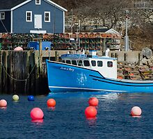 Nova Scotia Fishing Village by Randy Hill