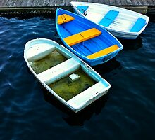 Abandoned rowboats make their escape by Larry Buckley