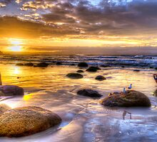 Watego's Sunset with Seagulls and Girl by Cheryl Styles