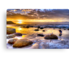 Watego's Sunset with Seagulls and Girl Canvas Print