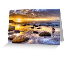 Watego's Sunset with Seagulls and Girl Greeting Card