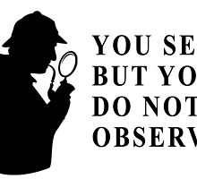 You see, but you do not observe by matabela
