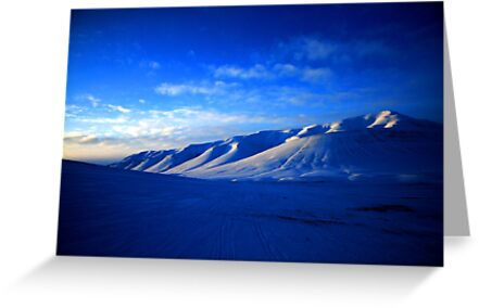 Svalbard Wilderness by David McGilchrist