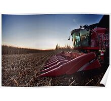 Sunset down the Rows Poster