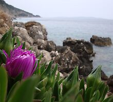 Flower and the sea by soulpacifica