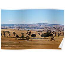 Dry Australia landscape Poster