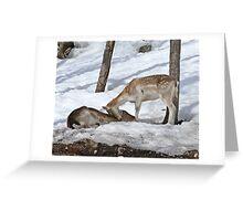 Wake up sweetheart Greeting Card