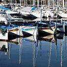 Antibes Harbour by Lance Shepherd
