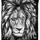 Lion by Szymon Marciniak