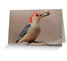 Red belly with peanut. Greeting Card