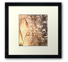 A place of lightness Framed Print