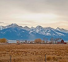 The Mission Mountains from Charlo by Bryan D. Spellman