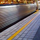 Train 13 03 13 _ Two by Robert Phillips