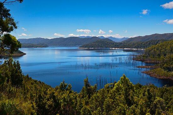 Picturesque Lake Gordon by Chris  Randall
