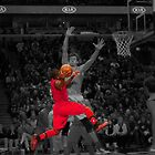 Nate Robinson by Engagephotos23