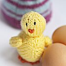 Little Chick by Emilie R