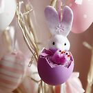 Bunny Easter  by Emilie R