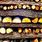 Firewood by ©The Creative Minds