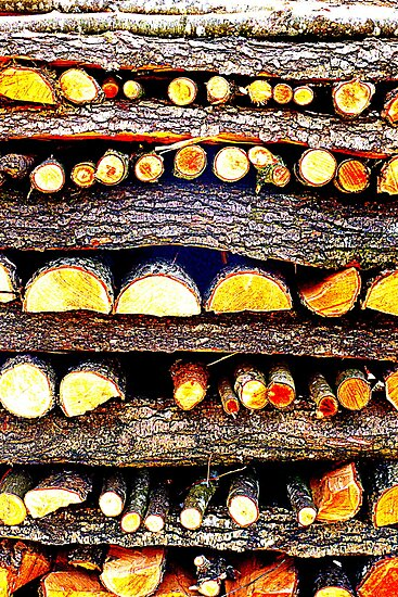 Firewood by The Creative Minds